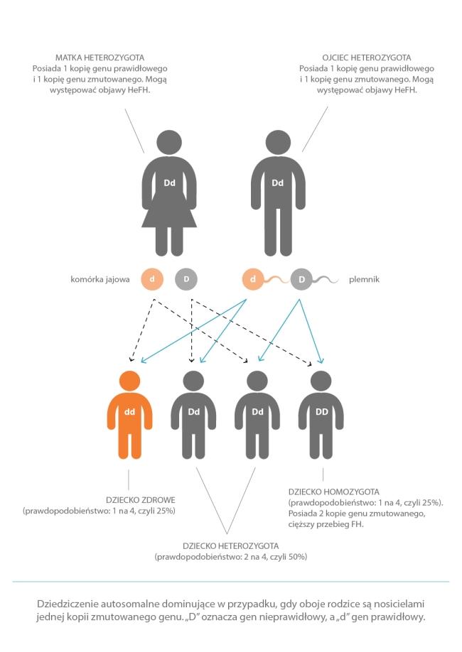 Rodzinna hipercholesterolemia