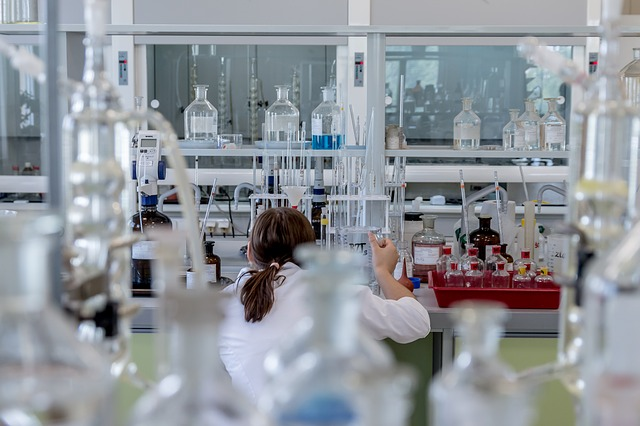 laboratorium miniaturowe nerki