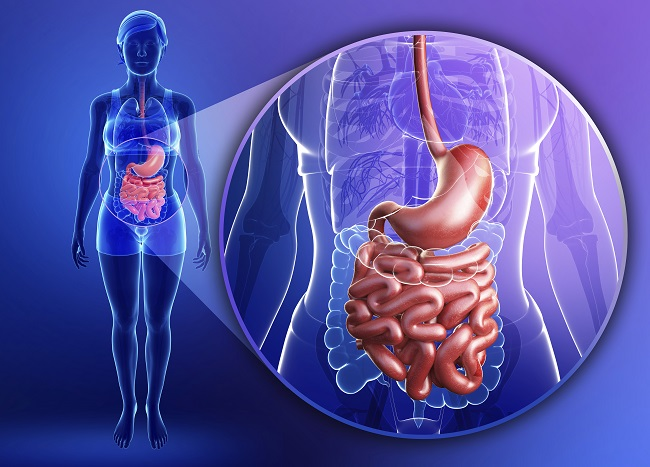 Flora bakteryjna ijej wpływ na masę ciała