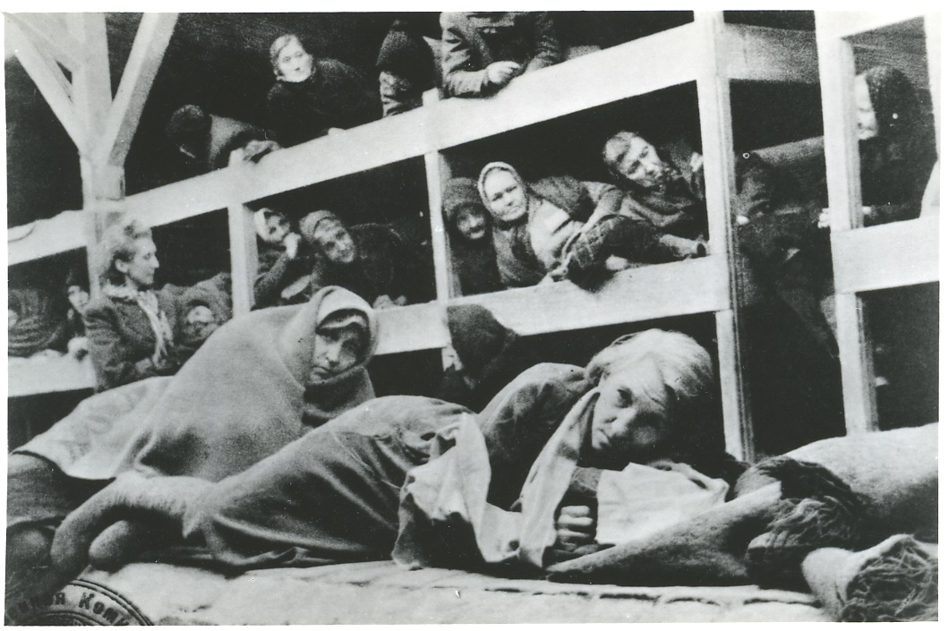 Historical Pictures   Medical Review Auschwitz