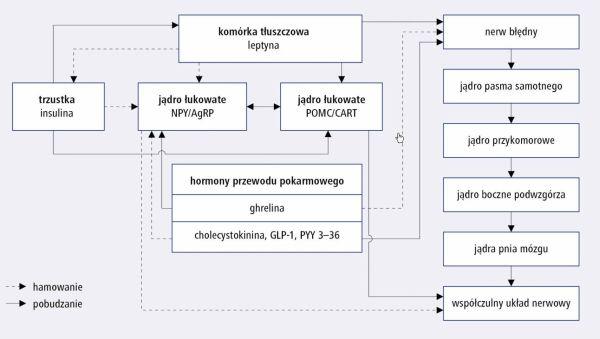glikokortykosteroidy donosowe preparaty