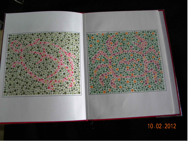 Test widzenia barwnego (Colour Vision Test Plates For the Infants)