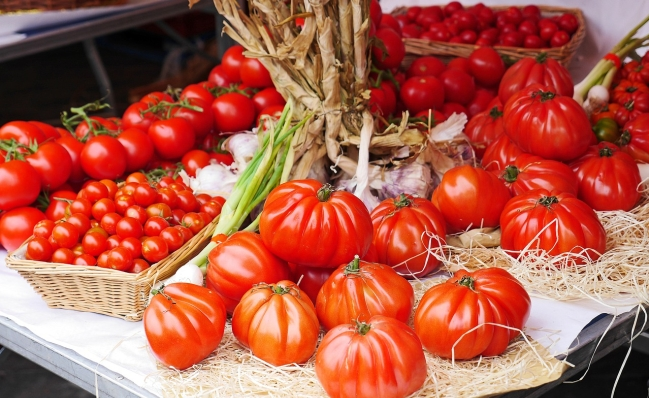 Pomidory wdiecie