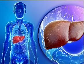 β-блокатори для профілактики декомпенсації цирозу печінки ухворих із клінічно значущою портальною гіпертензією — дослідження PREDESCI