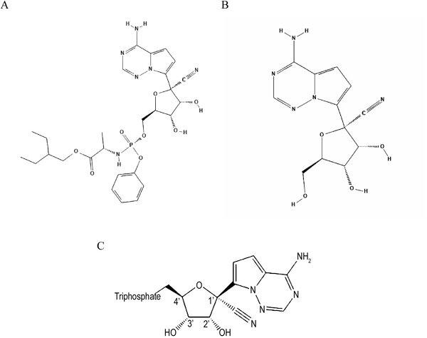 Хімічні структури: A— ремдесівір (пролікарський засіб); B— GS-441524 (проміжний метаболіт); C— активний метаболіт GS-443092 (Amirian S.E., Levy J.K.: Current knowledge about the antivirals remdesiv