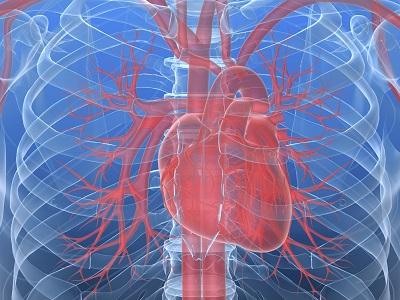Чи абляція фібриляції передсердь упацієнтів із дисфункцією лівого шлуночка впливає на їхній прогноз?