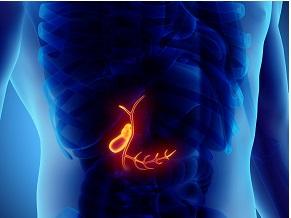 Захворювання підшлункової залози — досягнення 2019. Хронічний панкреатит