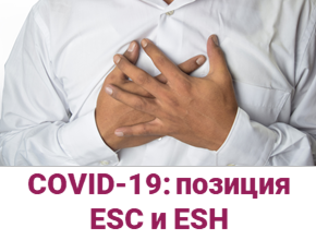 Заболевания сердечно-сосудистой системы во время пандемии COVID-19 всвете актуальных научных данных и позиции ESC и ESH — общая информация, патогенез сердечно-сосудистых осложнений