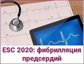Рекомендации ESC 2020, посвященные фибрилляции предсердий — что нового, и что не изменилось