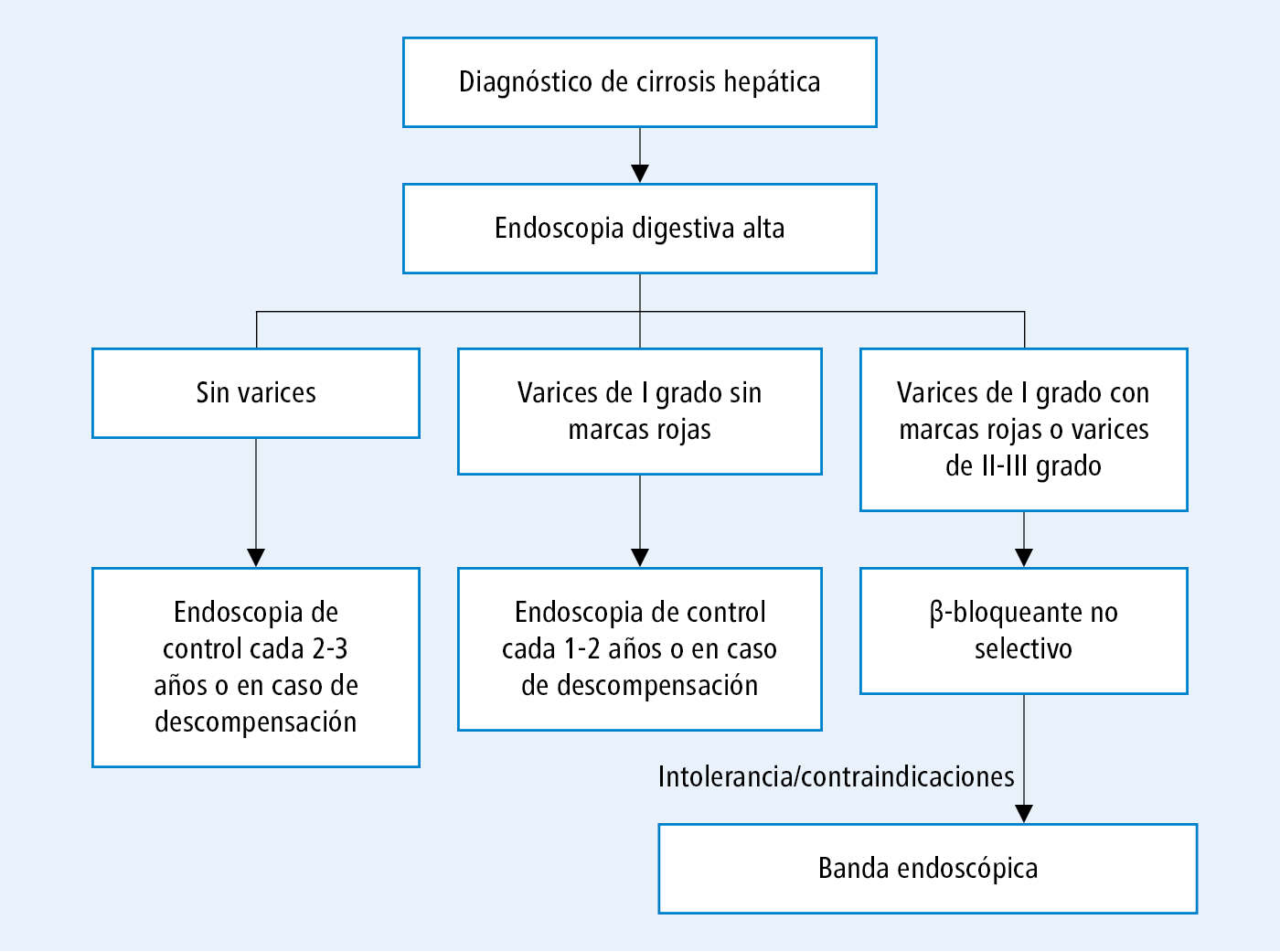 Que es la Cirrosis Causas síntomas y tratamiento
