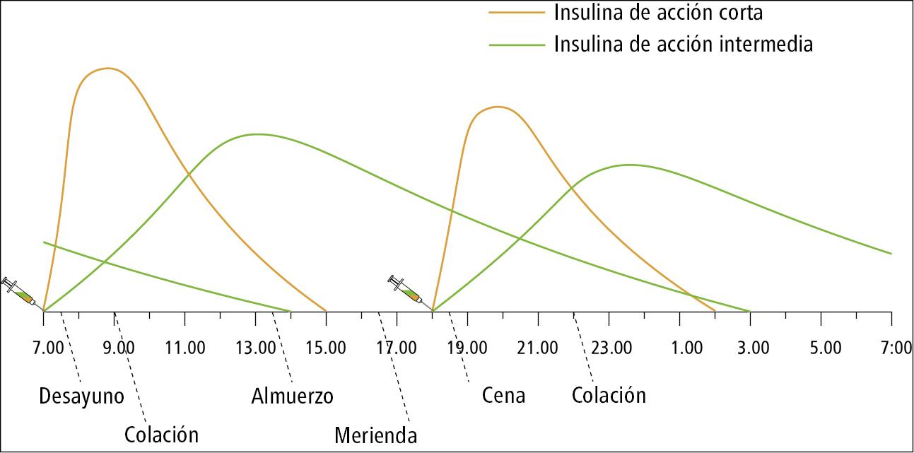Esquema de tratamiento con mezclas de insulinas humanas administradas 2 × día (insulina de acción corta con insulina de acción intermedia)