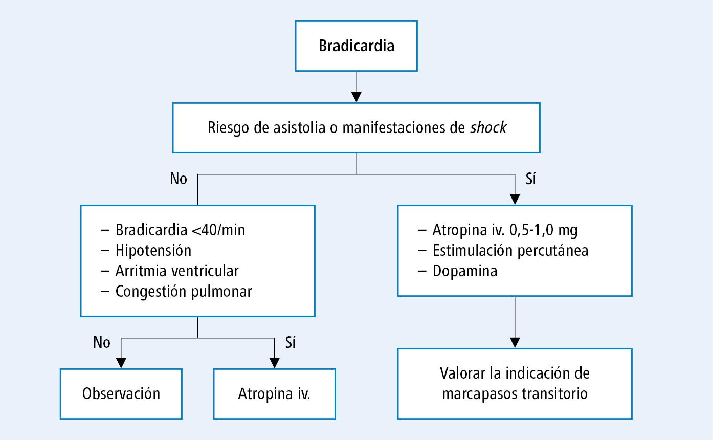 Medicamentos para la bradicardia crónica por hipertensión