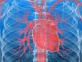 Ryzyko sercowo-naczyniowe – część I