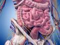 Rak jelita grubego wstadium rozsiewu – komentarz Idy Cedrych