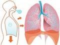 Badanie zdolności dyfuzji gazów wpłucach (DLCO, TLCO)