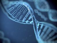 Diagnostyka genetyczna wchorobach nowotworowych udzieci – zarys ogólny
