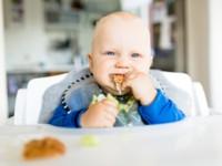 Czy stosowanie metody BLW wpływa na rozwój oraz wskaźnik masy ciała dziecka?