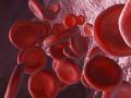 """<a href=""""http://www.mp.pl/pacjent/badania_zabiegi/171828,bialko-calkowite"""">Białko całkowite</a>"""