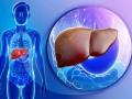 NAFLD en la diabetes <i>mellitus</i> tipo 2 y en la enfermedad cardiovascular