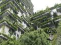 Na poprawę jakości powietrza waglomeracjach wpływa rolnictwo miejskie