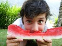 Zespół alergii jamy ustnej udzieci