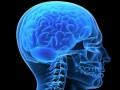 """<a href=""""http://rehabilitacja.mp.pl/rehabilitacja-medyczna/show.html?id=121683"""">Rehabilitacja neurologiczna</a>"""
