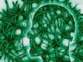 Bakteryjne zapalenie opon mózgowo-rdzeniowych