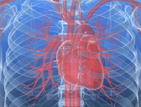 Guz prawego serca leczony zachowawczo