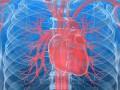 Rozpoznanie ileczenie ostrej iprzewlekłej niewydolności serca. Podsumowanie wytycznych European Society of Cardiology 2012