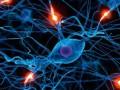 Głęboka stymulacja mózgu wchorobie Parkinsona - kliniczne itechniczne aspekty leczenia