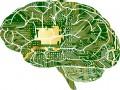 Komputery podłączone do mózgu? To już nie fantazja