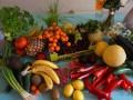 """Kampania """"5 porcji owoców iwarzyw"""" ma zmienić nawyki żywieniowe"""