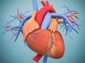 Postępowanie uchorych zkomorowymi zaburzeniami rytmu izapobieganie nagłej śmierci sercowej. Podsumowanie wytycznych ESC 2015